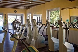 Cardiobereich mit Step, Stair, Crosstrainer, Laufbändern und Ergomethern von Ergofit®